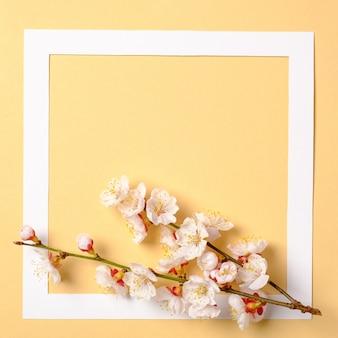 Plat frame met bloesem sakura takken, bladeren en bloemblaadjes