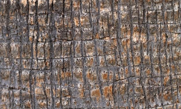 Plat gelegd stenen oppervlak