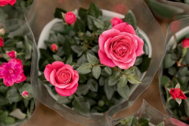 Plat lag arrangement met roze rozen