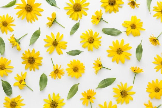 Plat lag arrangement van gele madeliefjes