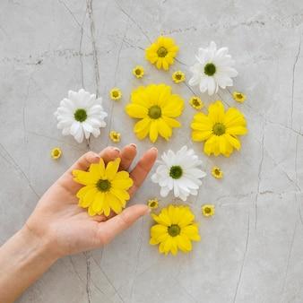Plat lag assortiment van optimisme concept met bloemen