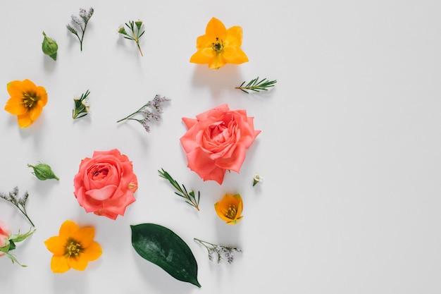 Plat lag helder creatief patroon van verse bloemen en bladeren natuurlijk. bloemen patroon.