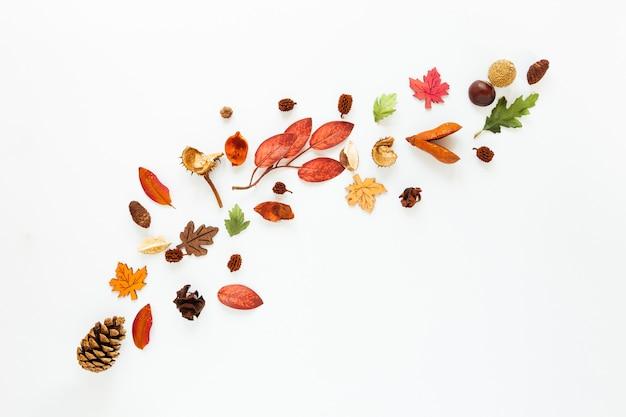 Plat lag herfstbladeren op witte achtergrond