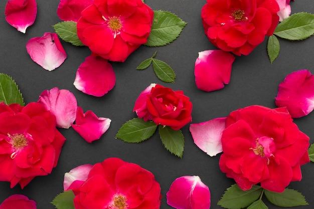 Plat lag ijsberg rozen met bladeren