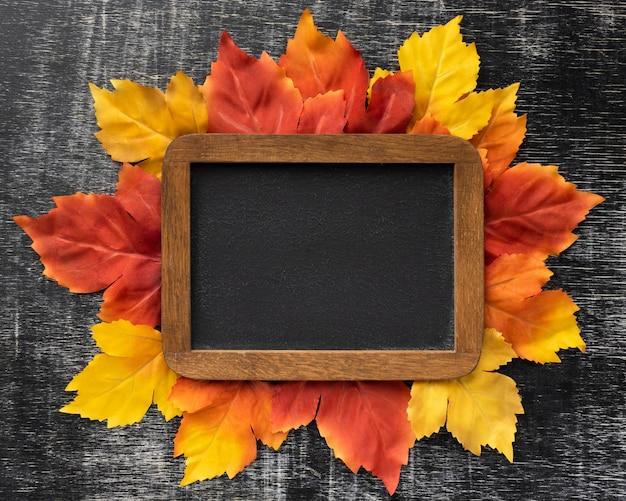 Plat lag kleurrijke bladeren en frame-assortiment