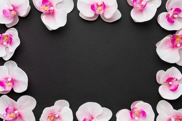 Plat lag orchideeën frame