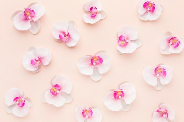 Plat lag roze orchideeën arrangement