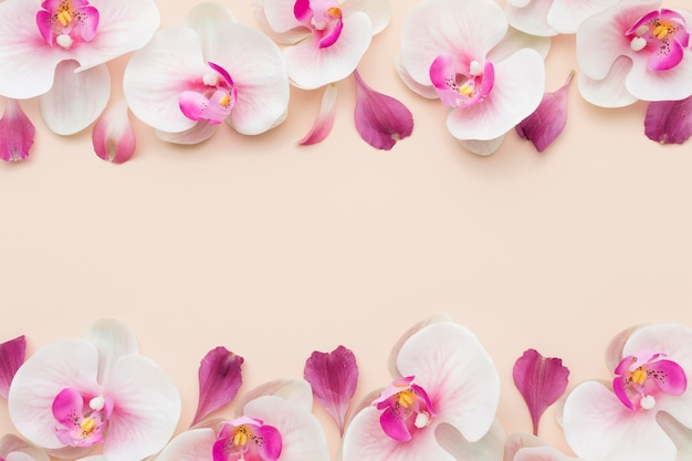 Plat lag roze orchideeën met kopie-ruimte