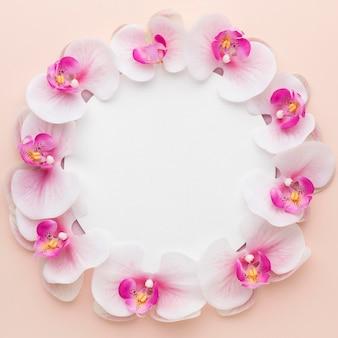 Plat lag roze orchideeën met zwarte cirkel