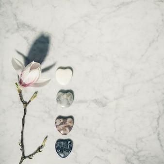 Plat lag samenstelling met prachtige lentemagnolia bloemen en grijze stenen op witte marmeren achtergrond. ontspanning en zen-achtig concept.