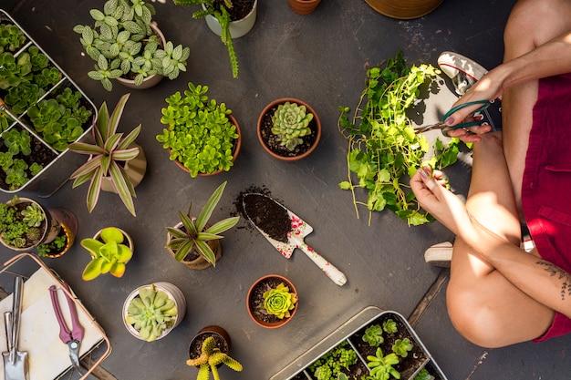 Plat lag vrouw het verzorgen van planten