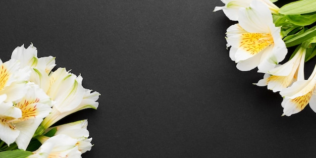 Plat lag witte alstroemeria boeketten met kopie-ruimte