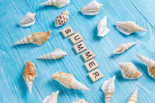 Plat lag zomersamenstelling met zeeschelpen