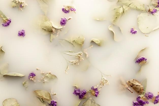 Plat leg paarse bloemen in wild water