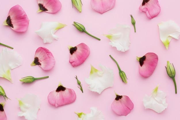 Plat leggen bloemen bloemblaadjes
