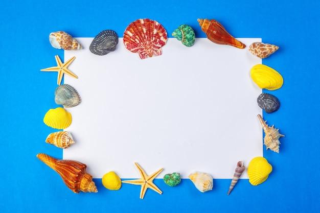 Plat leggen. bovenaanzicht frame van shells van verschillende soorten op een blauwe achtergrond.