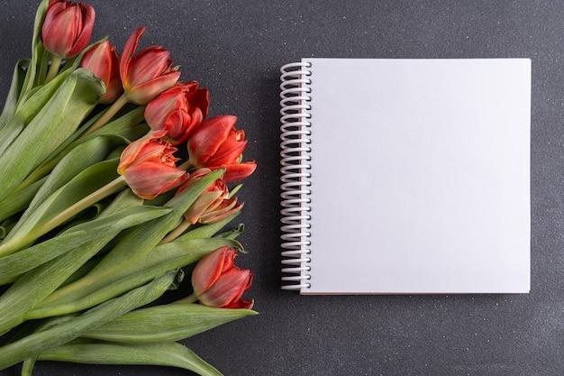 Plat leggen lente tulp bloemen en notebook voor tekst op een grijze achtergrond, plat leggen.