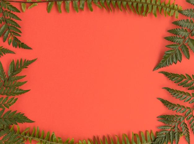 Plat leggen van bladeren frame met kopie ruimte
