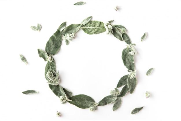 Plat leggen van frame met groene takken, bladeren en bloemblaadjes geïsoleerd