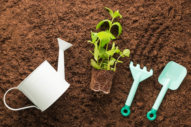 Plat leggen van gereedschap voor planten en tuinieren