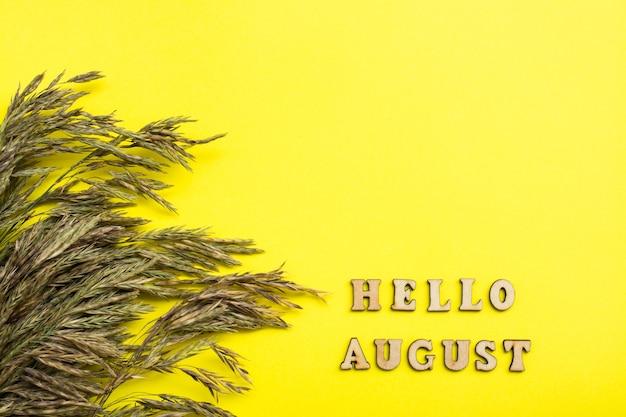 Plat leggen van hallo augustus tekst met hooi