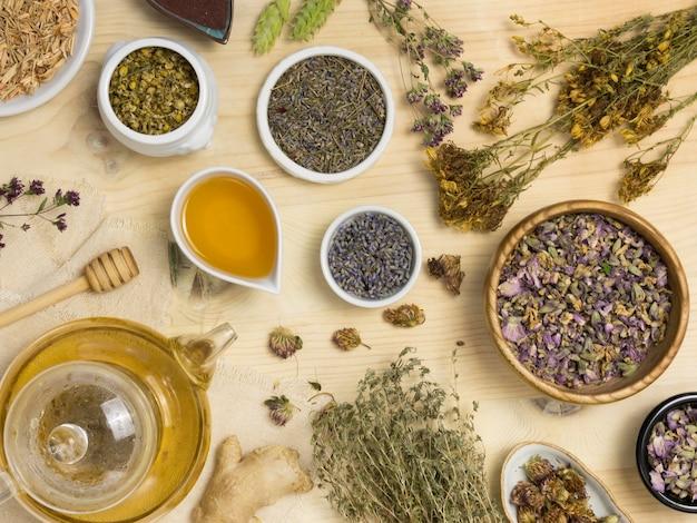 Plat leggen van natuurlijke geneeskrachtige kruiden en specerijen