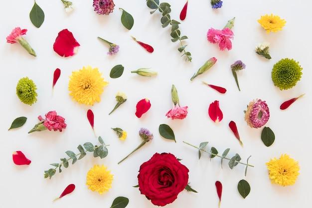 Plat leggen van prachtig bloemenarrangement