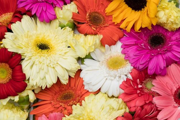 Plat leggen van prachtige bloemen