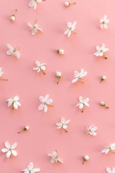 Plat leggen van wilde kersen toppen en enkele bloemen op pastel roze achtergrond. lente tijd