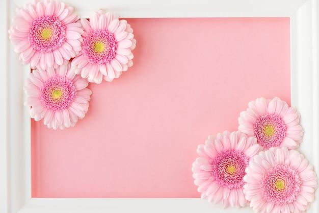 Plat leggen van wit frame met roze bloemen gerbera's