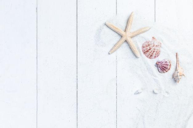 Plat leggen van zeesterren en schelpen met wit zand