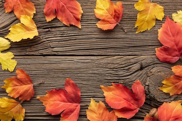 Plat liggende frame met bladeren en kopie-ruimte