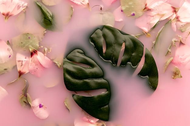 Plat roze bloemblaadjes en bladeren in roze gekleurd water