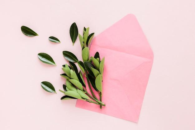 Plat van bladeren op de envelop