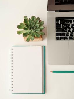 Plat van notebook, kladblok, potlood en succulent.