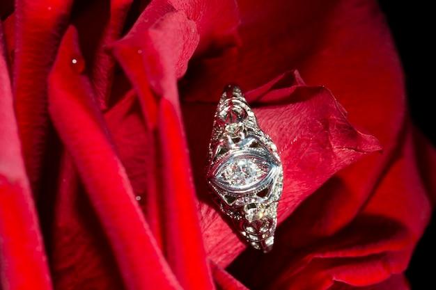 Platina ring met een diamant op een rode roos, close-up (hearts arrows)