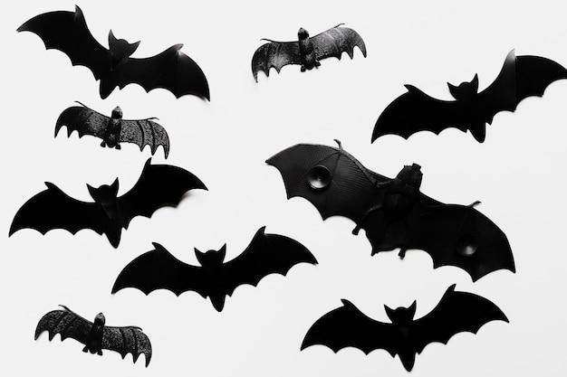 Platliggend arrangement met vleermuizen