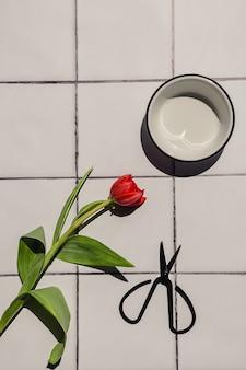 Platliggende compositie van een vers gesneden rode tulpenbloem, zwarte schaar en een witte kom op witte tegel.