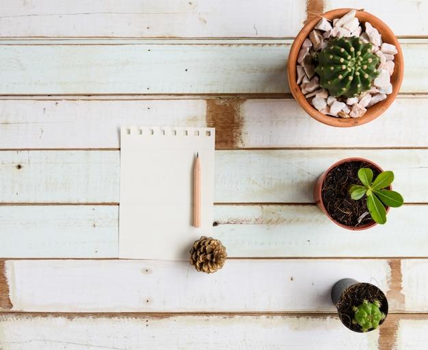 Platte lat ontwerp groene plant op houten tafel, bovenaanzicht