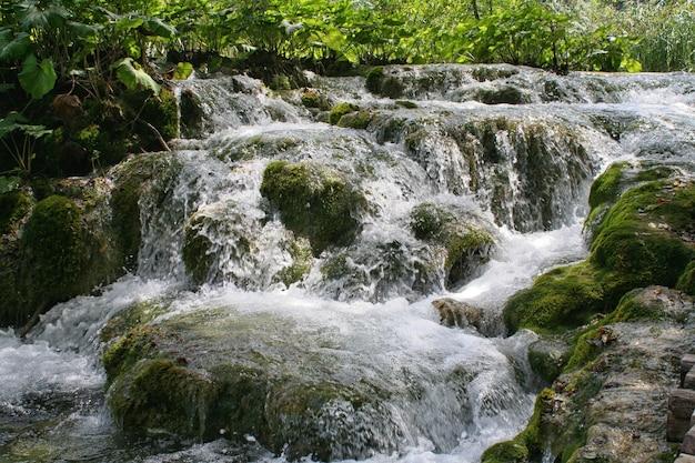 Plitvicemeren, kroatië, europa. vijvers en watervallen in de groene vegetatie