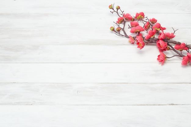 Plum flowers blossom op witte houten plank