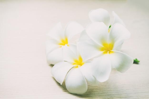 Plumeria verse bloemen of frangipani tropische bloemen op houten lijst