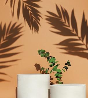 Podiums met groen blad en schaduw op beige