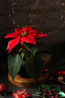 Poinsettia, kerstboom, geschenkdozen, bessen, ballen op donkere achtergrond. bovenaanzicht