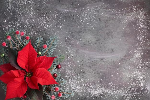 Poinsettia van de kerstmisbloem en verfraaide spartakjes op donkere geweven achtergrond, exemplaar-ruimte