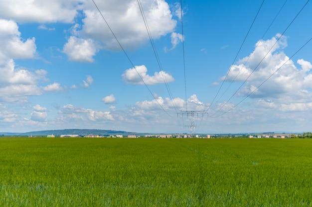Polen met hoogspanningsdraden in het land