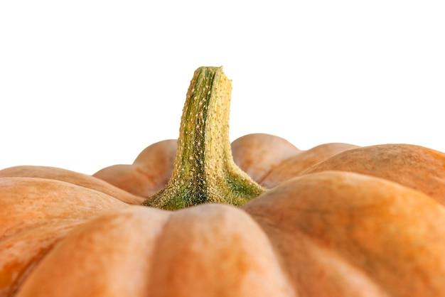 Pompoen macrofotografie. selectieve focus van halloween-pompoen