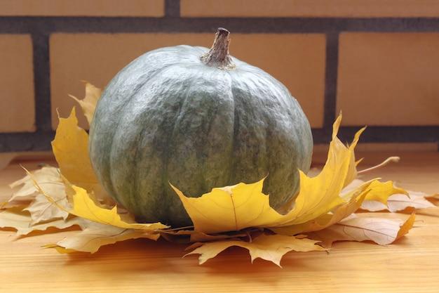 Pompoen op gele bladeren. feestdagen herfst festival scène, herfst, oogst. pompoen op een bakstenen muurachtergrond, de herfstatmosfeer