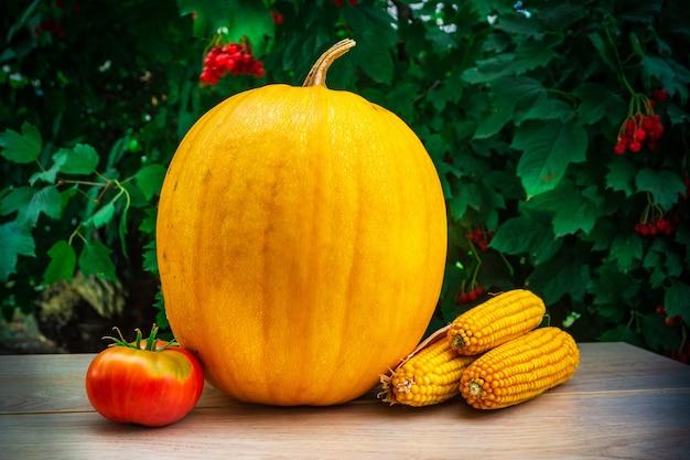 Pompoen, tomaat en maïs op tafel samen met een tak van viburnum. na het oogsten.