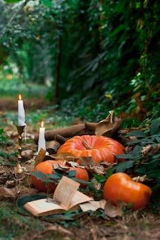 Pompoenen en kaarsen in de tuin. ideeën decor voor halloween. selectieve aandacht.
